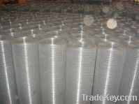 Sell weld wire mesh
