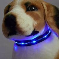 Sell LED collar