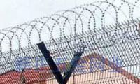 Sell Razor Wire Fence