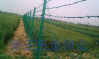 Sell Barbed iron fence