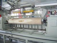 shangdong baishengyuan plywood prodution line machines