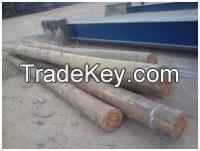 Wood Logs On sale