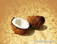 Organic coconut oil