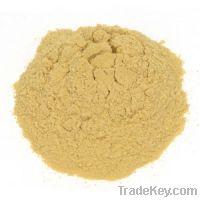 Brewer Yeast Powder