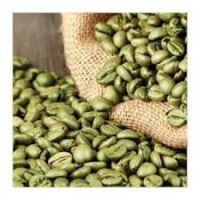 Green Arabica Coffee Beans