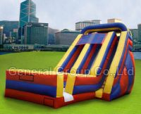 Inflatable Dual Lane Accelerator Slide