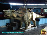 Sell Exhibition Dinosaur Models