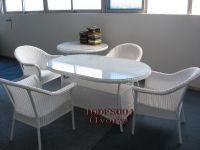 Wicker Tabe & Chair (IODFS004)