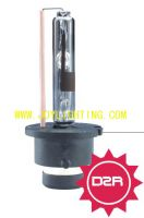 Sell TC-high quality hid lamp D2R