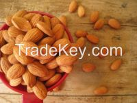 Raw Almonds (In Shell), Almond Flour, Raw Almonds (No Shell), Organic Almonds (Raw, No Shell), Roasted Almonds (Unsalted), , Roasted Almonds (Salted), Organic Wild Apricot Kernels (Sweet), Dark Chocolate Covered Almonds, Jordan Almonds (White), Dark Choco