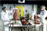 KEBAB MEAT PREPARING MACHINES , LINES