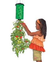 Sell Topsy Turvy Tomato Planter (PP-010)