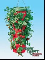 Sell Topsy Turvy Strawberry Planter (PP-011)