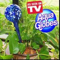 Sell Aqua Globe (P-T002)