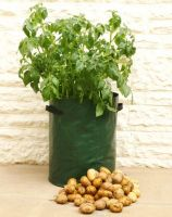 Sell potato tub, potato grow bag