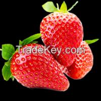 Sell Fresh Strawberry