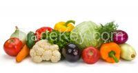 Sell Fresh Vegetables