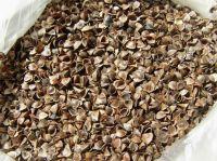 supply buckwheat husk hull