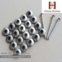 Twisted Shank Roofing Nail