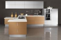 Classical Series Kitchen Cabinet - OP10-X113