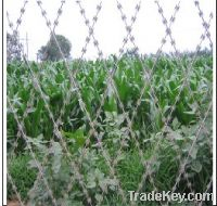 Sell Welded Razor Barbed Wire