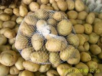 Sell Potatoes top quality &  best prices