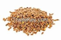 Sell Flax Seeds