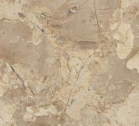 Breccia Egyptian Marble CIDG