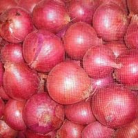 Sell  red onion