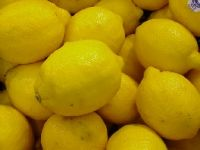 Sell fresh lemon