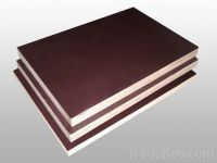 Sell Shuttering Plywood, Marine Plywood