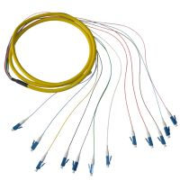 Sell LC PC fiber optic pigtail12 core