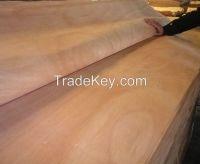 0.3mm Okoume Veneer for plywood face/back