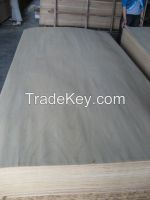 0.5mm Masarwa Veneer for plywood face/back