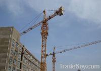 Sell Topkit Tower Crane Qtz80 (TC5015) max load 8t