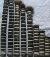 Sell double drawn horse tail hair