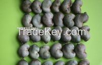 Raw and roasted Quality Cashew Nuts for sale