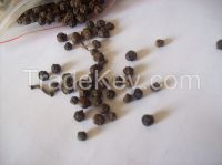 MANUFACTURER OF BLACK PEPPER