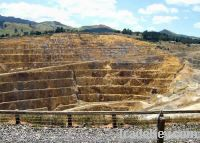 Sell Gold and Nickel Mine