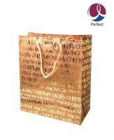 2011 New Design Paper Bag