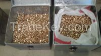 Gold nuggets ready export