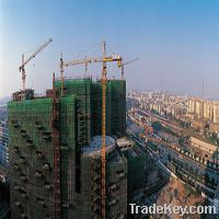 Sell kinds of sc series construction cranes and hoists