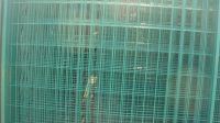 Sell welded wire mesh panel