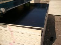 Sell film plywood  hard board and chipboard