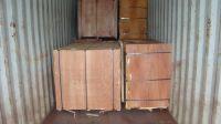 Sell 4x8 veneer face plywood