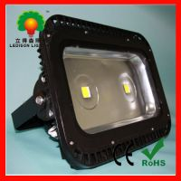 Supply 200W LED garden lights