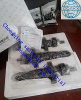 injector 3609849 diesel engine k19k38nt855M11 CCEC ISDE