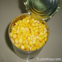 Sell Canned Sweet Corn