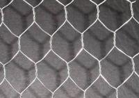 Sell Hexagonal Wire Netting