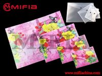 PP Envelop Folder Set
